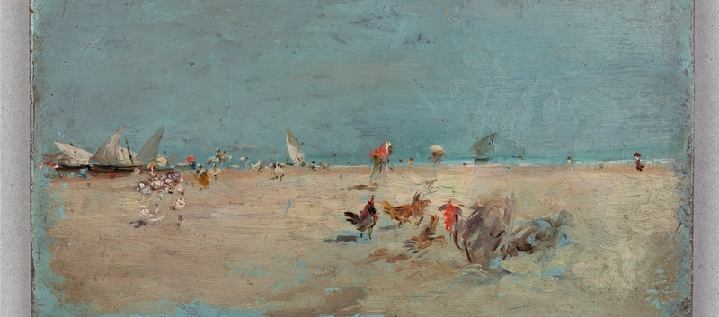 Gallinas en la playa