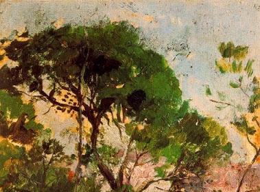 paisaje-crop